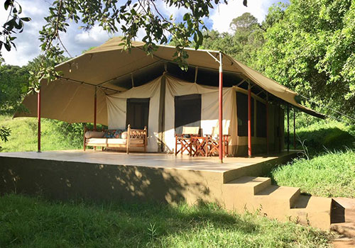 3 Days Kenya Tented Camp Safari Masai Mara – Entumoto Safari Camp