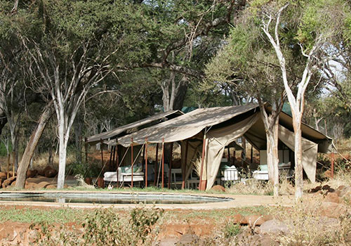 5 Days Kenya Safari to Meru National Park and Samburu National Reserve
