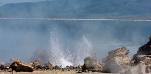 Day Trip to Lake Bogoria National Reserve