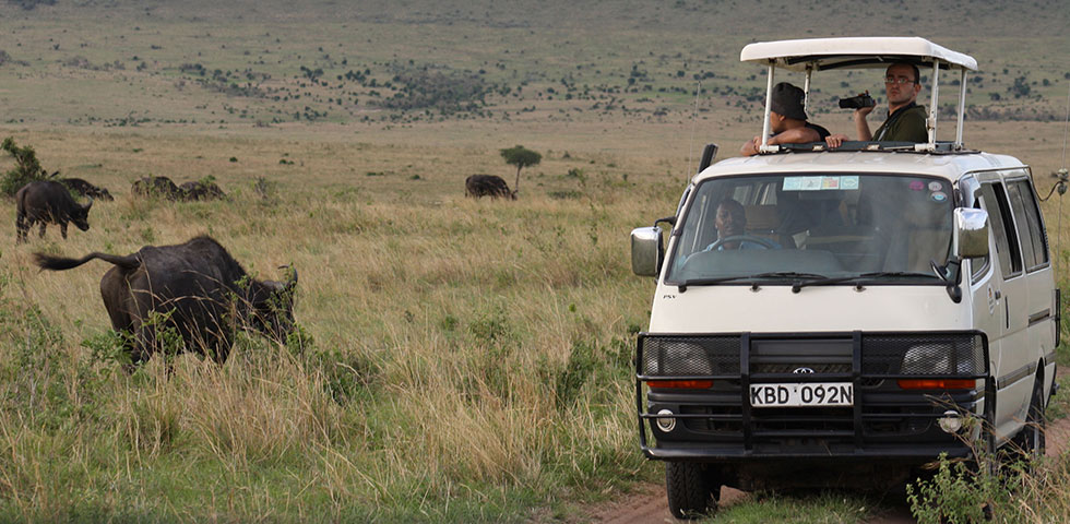 2 Days Kenya Budget Safari to Famous Masai Mara Game Reserve
