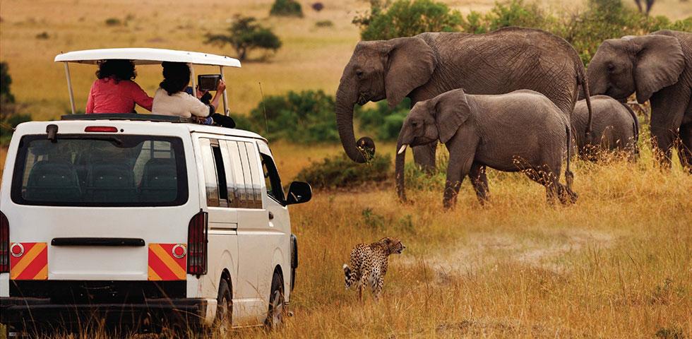 7 Days Kenya Safari Masai Mara, Lake Nakuru, Samburu and Sweetwaters