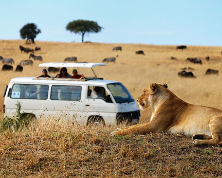 3 Days Kenya Wildlife Safari To Great Masai Mara Game Reserve
