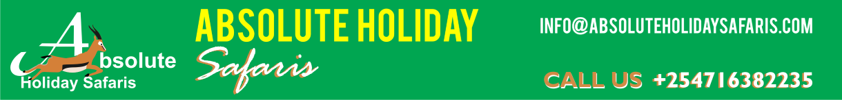 Absolute Holiday Safaris Banner