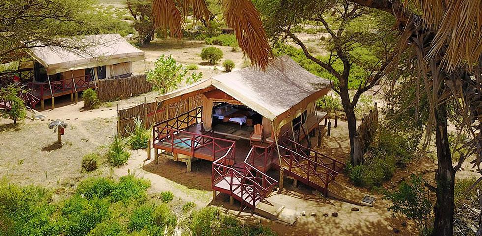 Magical Kenya Safari Trip