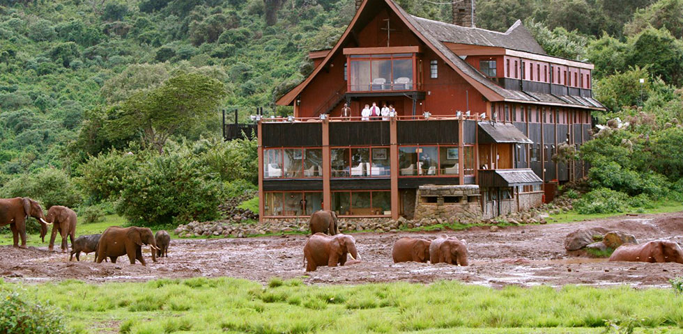 Kenya Luxury Safari Holiday