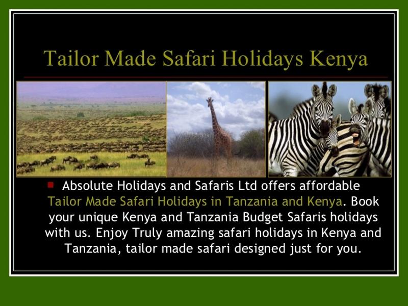 Blog - Absolute Holiday Safaris